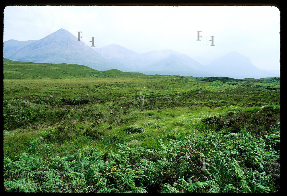 Grassy lowlands catch a spot of sun as mist clears off distant mountains; Isle of Skye. Scotland