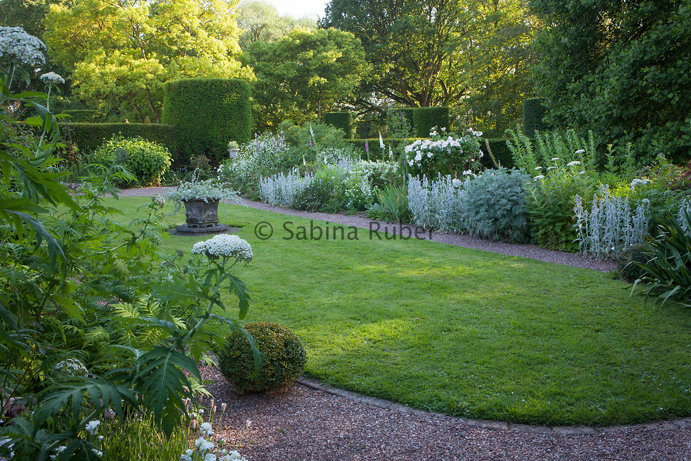 Silver and white planting in the 'Green Knight Garden', Cothay Manor, Somerset