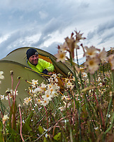 Man in the tent door, flowers in the foreground. Patagonia, Chile