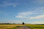 Landscape in South Black Forest near Todtnau, Baden-Wurttemberg, Germany