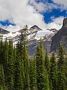 Looking over Lake O'Hara to Mount Lefroy and Oesa Glacier. Yoho National Park, British Columbia, Canada.