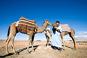 a man with his camels in morocco in the atlas mountains Morocco travel photography