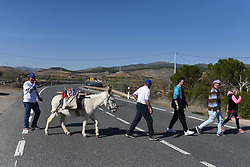 March 30, 2019 - Calatayud, Zaragoza, Spain - Raimundo Fernandez (left), mayor of the small village of Torrubia de Soria, Hermeregildo Hernando (center) and several villagers from the town of Calatayud are seen walking with a donkey 'Margarita' during the protest against depopulation in the Soria region..Raimundo Fernandez, mayor of the small village of Torrubia de Soria, is marching with his donkey 'Margarita' from his village to Calatayud 60 kilometres distance, to demand that the Spanish government take measures against depopulation in the region. (Credit Image: © Jorge Sanz/SOPA Images via ZUMA Wire)