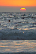 Swimming In The Ocean At Sunset