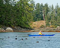 Flora and fauna of beautiful Quadra Island, British Columbia, Canada