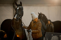Isabel Cool, BEL, Aranco V<br /> Jumping Mechelen 2017<br /> © Sharon Vandeput<br /> 26/12/17