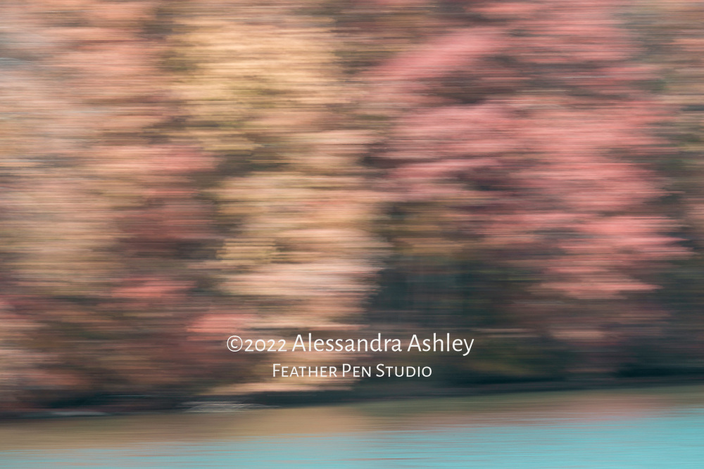 Shoreline of Clear Fork Reservoir in autumn, captured with in-camera impressionistic blur. Warmtone version.