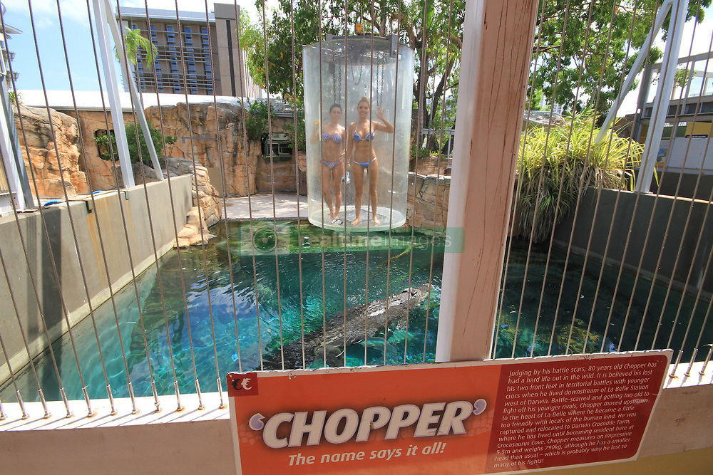 "Tourists now have the chance to take the ultimate holiday snap — by coming face-to-face with a killer crocodile. The Cage of Death attraction based at Crocosaurus Cove in Darwin, Australia, sees thrill seekers submerged into an aquatic enclosure with a 16ft saltwater beast called Chopper while sat inside a plastic cylindrical cage. The 30 minute encounter — which costs $170 AUD for one person and $260 AUD for two people — starts with up to two people per cage being hoisted over the water to see the croc swirling below. A keeper then feeds the reptile as the cage is lowered, so the participants can see the crocodile barreling towards them underwater. These photos show tourists posing up a storm while submerged in the tank as the croc swims around them. One frame in particular captures the ominous scratch marks all over the cage — proving tourists really are looking into the jaws of death. After 15 minutes underwater the cage, which operates via an overhead monorail, is lifted to safety. German tourist Nellie Winters told local media: ""I was scared but I was fascinated as well. I kept thinking he was going to eat me. You are right next to him and you sometimes forget that there are cages around you. 'You're that close that you think you could swim next to him and, yeah, he could also eat you, even though he won't."" The Saltwater crocodile — the largest of its kind — can grow up to 20ft long with teeth as long as 4in. In the wild they are found across the north of Australia and are also native to India and other areas of south-east Asia. Crocosaurus Cove has a total of seven crocodiles, including a breeding pair called William and Kate, named after the Duke and Duchess of Cambridge. The Cage Of Death has been running since 2011 and other attractions at the park include visitors being given the opportunity to hold baby crocodiles. 08 Sep 2017 Pictured: Thrill-seeking tourists come face-to-face with a killer 16ft Saltwater crocodile at Crocosaurus Cove"