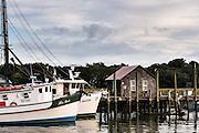 Shrimp boats docked along Shem Creek in Mount Pleasant, South Carolina.
