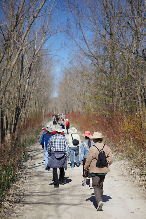 Jane's Walk 2013, Leslie Spit