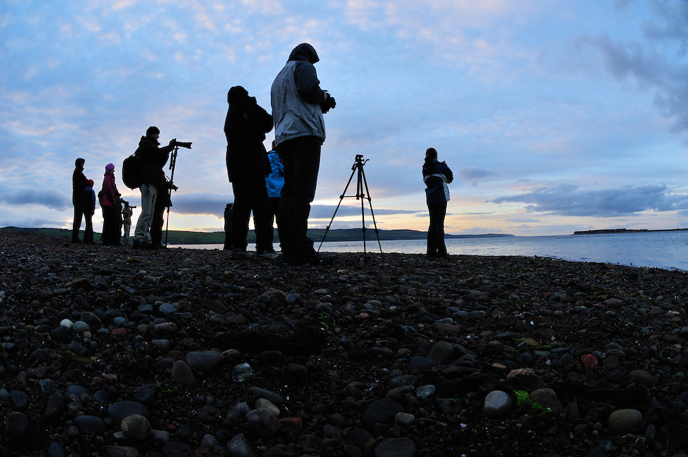Dolphin watchers at sunset at Chanonry Point,<br /> Tursiops truncatus,<br /> Moray Firth, Nr Inverness, Scotland - May