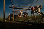 11/7/07 Smith Center, KS.Smith Center High School football team runs drills during practice...(Chris Machian/Prairie Pixel Group)
