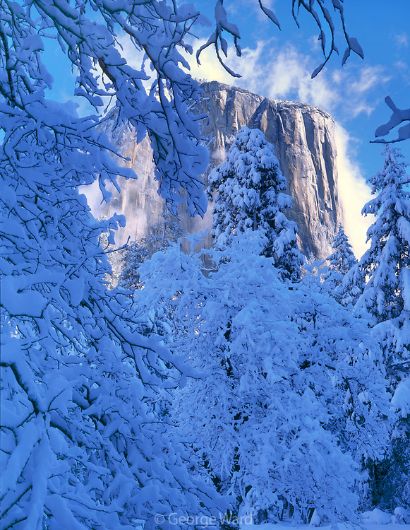 El Capitan after Snowstorm,Yosemite National Park, California