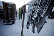 Deep frozen clothes hanging outside for drying beside a outside toilette at the Oymyakon village. The area is extremely cold during the winter. Two towns by the highway, Tomtor and Oymyakon, both claim the coldest inhabited place on earth (often referred to as -71.2°C, but might be -67.7°C) outside of Antarctica. The average temperature in Oymyakon in January is -42°C (daily maximum) and -50°C (daily minimum). The images had been made during an outside temperature in between -50°C up to -55°C. Oymyakon, Oimjakon, Yakutia, Jakutien, Russian Federation, Russia, RUS, 20.01.2010