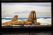 LA County Natural History Museum