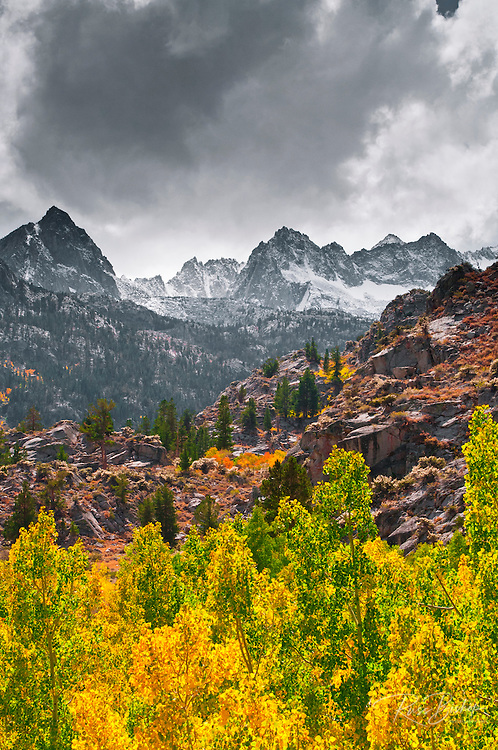 Fall color along Bishop Creek, Inyo National Forest, Sierra Nevada Mountains, California