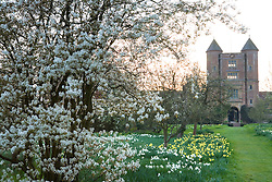 The Tower viewed from the orchard at Sissinghurst Castle Garden in spring