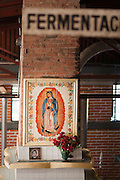 La Cofradia distillery in Tequila, Mexico of Jalisco with a shrine of Madonna in the fermenting room.