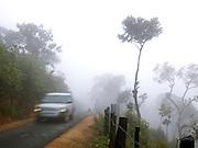 A 4x4 vehicle travels through coffee plantations in Malabar during the monsoon season, Kerala, India