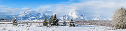 Grand Winter in Jackson Hole Very large panorama.4X1 ratio; can be printed as small as one foot tall X 4 foot wide or as large as 3-foot tall X 12-foot wide at 167 native DPI.   Custom prints only - contact.