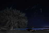 """BOLO Photo<br /> Wild West Automotive Photography<br /> 2019 Quandrantid Meteor Shower<br /> """"Old Man Winter Watching Over Signs of Light""""<br /> January 4, 2019<br /> Hawk Springs State Recreation Area, Wyoming<br /> (1979 Pontiac Trans Am: Heather Wendelboe)"""