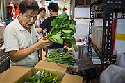 18 DECEMBER 2012 - SINGAPORE, SINGAPORE: A vendor sorts leafy greens in the Tekka Market in the Little India section of Singapore. PHOTO BY JACK KURTZ