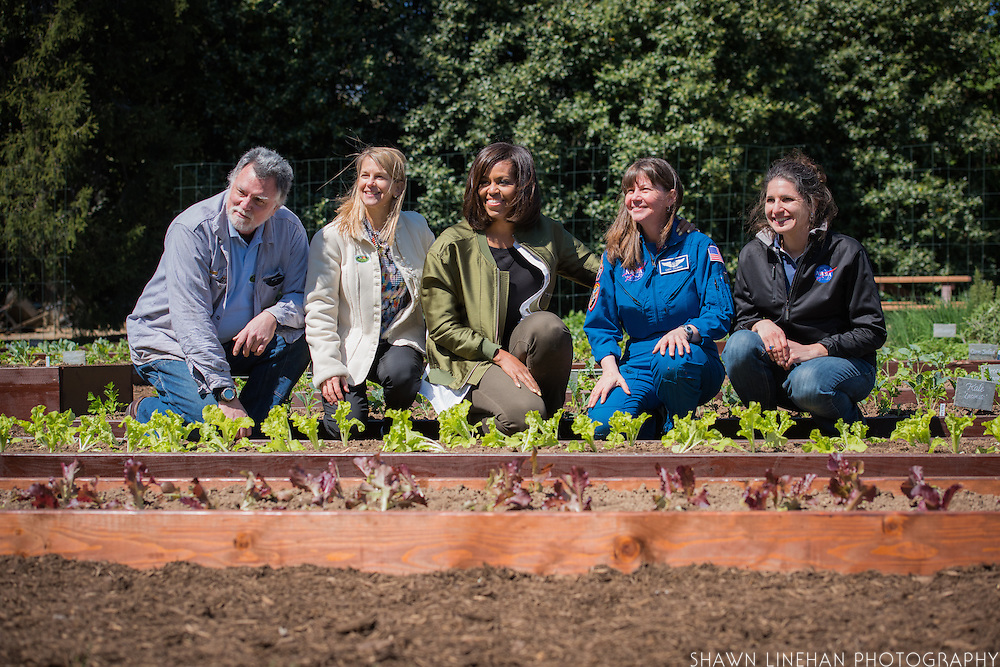 """First Lady Michelle Obama and the Nasa Team pose behind """"Outredgeous"""" lettuce the first vegetable grown in space which was bred by Frank Morton of Wild Garden Seed in Philometh, Oregon."""
