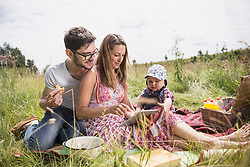 Family using digital tablet on meadow in the countryside, Bavaria, Germany