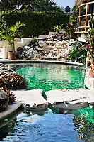sea shell pool a cabanas with a view  of the beautiful white sand beach of tulum in yucatan mexico