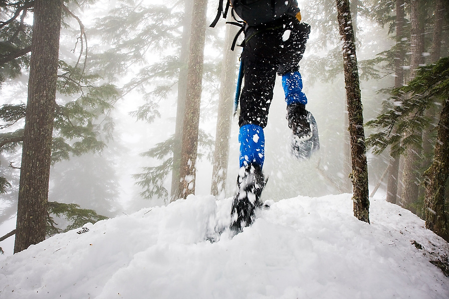 A snowshoer runs through a misty forest, Mount Baker-Snoqualmie National Forest, WA.