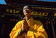 A Buddhist monk in saffron coloured robes with hands together while praying at the Buddhist Temple in Huating, China