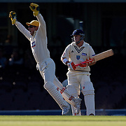 Western Australian wicket keeper Michael Johnson celebrates the dismissal of New South Wales batsman David Warner during day two of the Sheffield Shield Cricket match between New South Wales and Western Australia at the Sydney Cricket Ground, Sydney, Australia on March 6, 2009.   Photo Tim Clayton