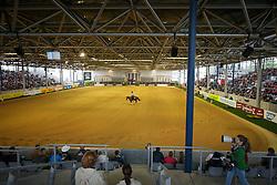 Overview<br /> Reining individual<br /> European Championships - Aachen 2015<br /> © Hippo Foto - Dirk Caremans<br /> 16/08/15