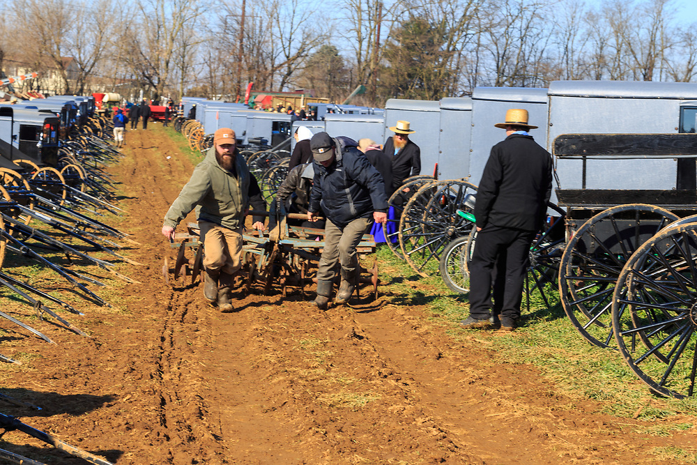 Gordonville, PA, USA - March 10, 2018: Pulling a plow just bought through a muddy field at the annual Lancaster County Mud Sale at the Gordonville Fire Company.