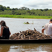 South America, Brazil, Amazon.  Two people transport manioc roots for harvesting on the Amazon River.