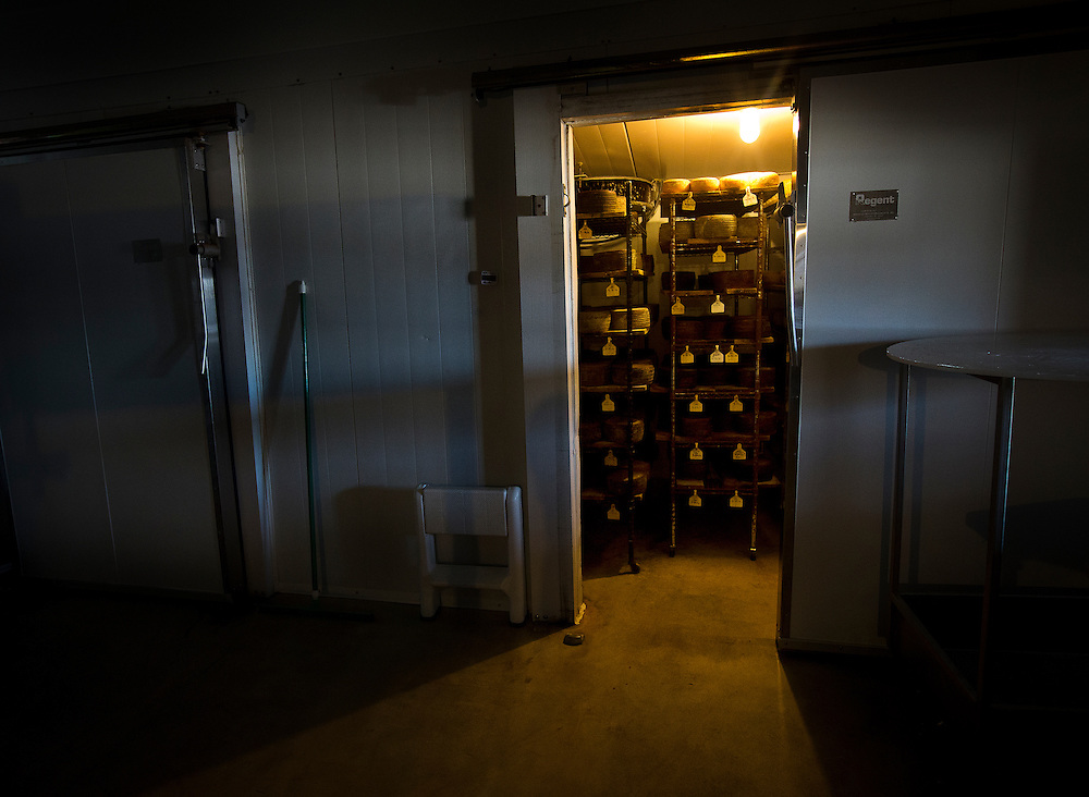 WESTBY, WI — DECEMBER 9: Wheels of cheese age in a climate-controlled room at Hidden Springs Creamery. These cheeses are kept in cool, damp enclosures to precisely control the aging process.