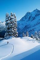 Mt. Shuksan, WA, USA.Cross country skiing..Winter, North Cascades..Brett Baunton
