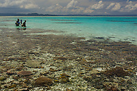 Very low tide reveals the coral reef from above the surface. Max Ammer and Gerry Allen enter the lagoon at Goh Island on an exploratory dive..