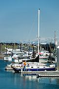 Yacht moored in Homer Boat harbor