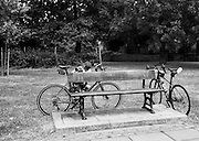 Chiswick. Greater London. Furnivall Gardens,  Memorial Bench, - Chiswick Mall and embankment  Leading from Chiswick to Fulham Reach RC. Sunday.  24.07.2016  [Mandatory Credit: Peter Spurrier/Intersport-images.com]