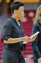 03 January 2014:  Assistant Coach Jessica Grayson during an NCAA women's basketball game between the Drake Bulldogs and the Illinois Sate Redbirds at Redbird Arena in Normal IL