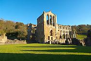 Rievaulx Abbey main church, side view.North Yorkshire, England