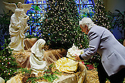 Linda Santelli of St. Celestine Parish in Elmwood Park places the Christ Child among the parish manger scene on Sunday, December 21st. 2014 l Brian J. Morowczynski-ViaPhotos<br /> <br /> For use in a single edition of Catholic New World Publications, Archdiocese of Chicago. Further use and/or distribution may be negotiated separately. <br /> <br /> Contact ViaPhotos at 708-602-0449 or email brian@viaphotos.com.