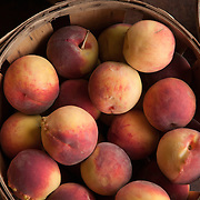 Bushel of peaches at a farm stand in Massachusetts