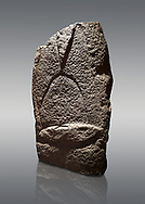 Late European Neolithic prehistoric Menhir standing stone with carvings on its face side. The representation of a stylalised male figure starts at the top with a long nose from which 2 eyebrows arch around the top of the stone. below this is a carving of a falling figure with head at the bottom and 2 curved arms encircling a body above. at the bottom is a carving of a dagger running horizontally across the menhir. Excavated from Cabamadau, Villa Sant' Antonia. Menhir Museum, Museo della Statuaria Prehistorica in Sardegna, Museum of Prehoistoric Sardinian Statues, Palazzo Aymerich, Laconi, Sardinia, Italy. Grey background. .<br /> <br /> Visit our PREHISTORIC PLACES PHOTO COLLECTIONS for more photos to download or buy as prints https://funkystock.photoshelter.com/gallery-collection/Prehistoric-Neolithic-Sites-Art-Artefacts-Pictures-Photos/C0000tfxw63zrUT4