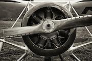Fairchild F-24 at WAAAM