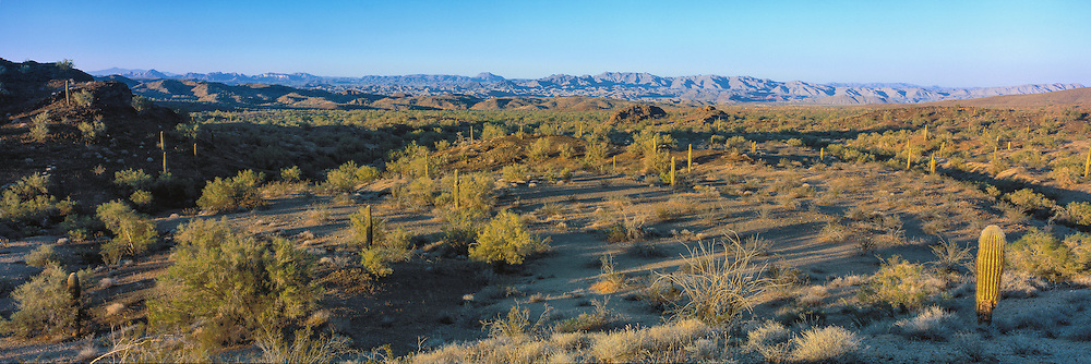 Afternoon light casts shadows across the Swansea Wilderness in the Sonoran Desert of western Arizona