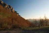 Claudia Müller photographing the Pollino Massif with Bosnian Pine (Pinus heldreichii; Pinus leucodermis), Basilicata/Calabria, Pollino National Park, Italy. November 2008. Mission: Pollino National Park