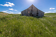 Old Barn in an Open Grain Farming Field in Palouse Washington