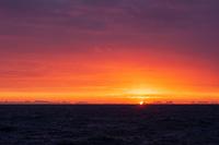 Colorful winter sunrise over the Vestfjord from near Reine, Lofoten Islands, Norway